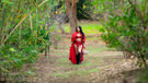 Transfixed Update - Chanel & The Wolf picture 3