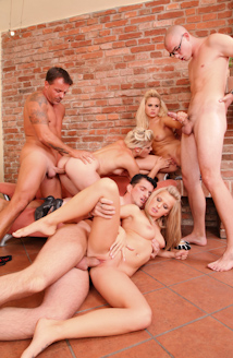 Swingers Orgies #02 Picture